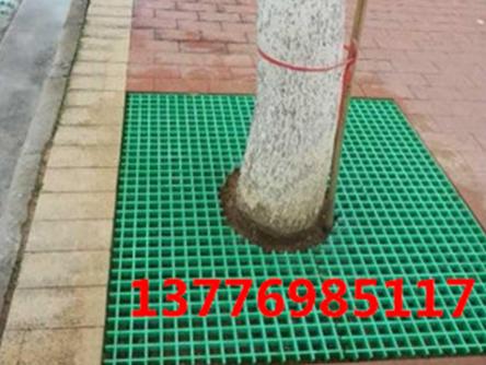 南京树篦子